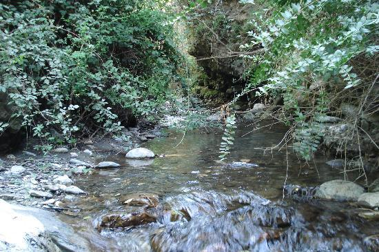 Durcal, สเปน: Un rincon del Molino