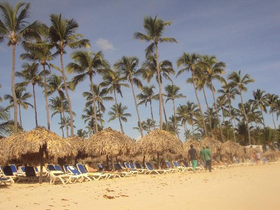 Majestic Elegance Punta Cana: VIP beach