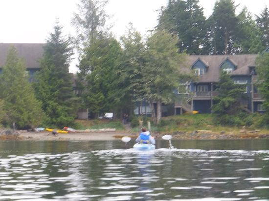 Water's Edge Shoreside Suites: kayaking back to waters edge