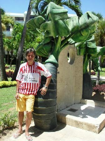 Sol Palmeras: En los jardines del hotel