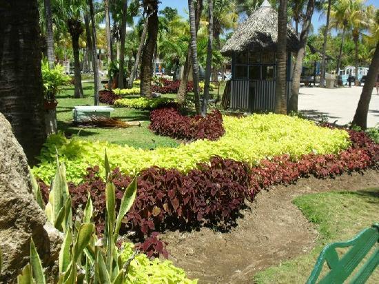 Sol Palmeras: El enorme y colorido jardín....hermoso