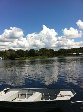 Williams Landing: St. John's River Astor, Florida