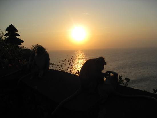 Atlantis International Bali: Coucher de soleil au temple d'Ulu Watu