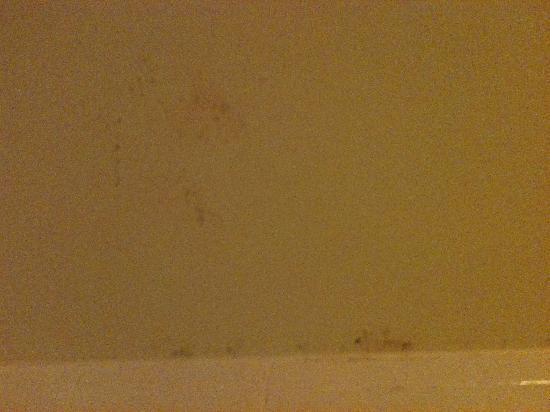 Hilton Atlanta Northeast: mold on the shower area ceiling