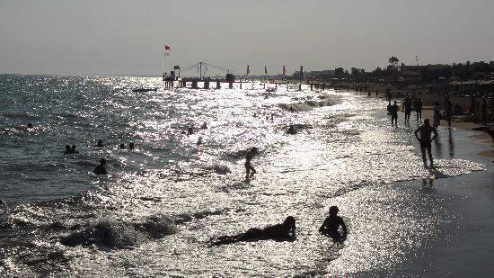 Paloma Grida Resort & Spa: La plage