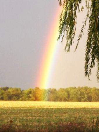 les Limornieres, the end of the rainbow!