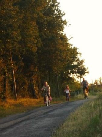 Les Limornieres: Quiet lanes, perfect for borrowing a bike and exploring