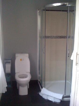 Glen Guest House: shower