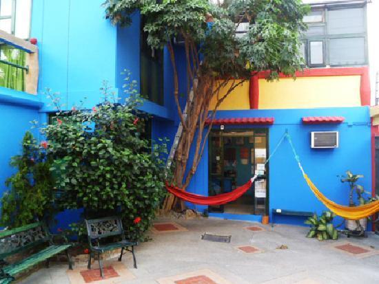DreamKapture Hostel: Hammock in the patio