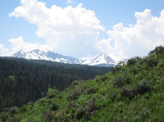 Nine Quarter Circle Ranch: Mountain Views