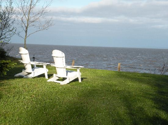 Four Seasons Retreat: A wonderful spot to relax and read, feet from the cottage