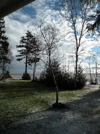 Four Seasons Retreat: View from our cottage