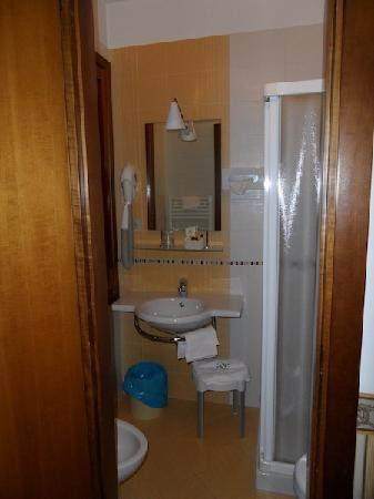 Hotel Al Vivit: View of the bathroom from the room