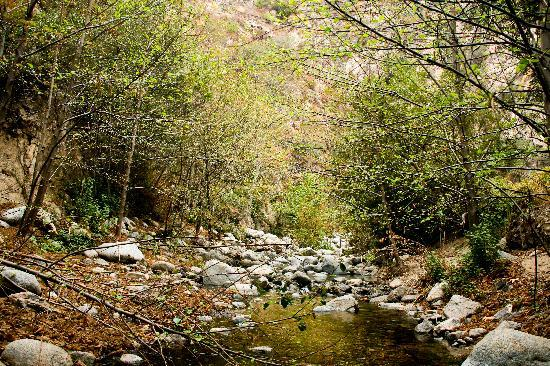 Eaton Canyon Natural Area: view from another creek crossing