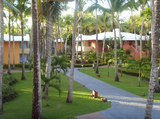 Iberostar Bavaro Suites: View from room