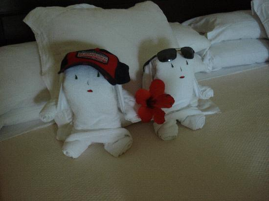 Paradisus Rio de Oro Resort & Spa: Towel Buddies