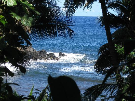Hawaii Tropical Botanical Garden: the path by the ocean