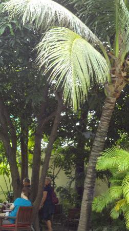 โรงแรมเดอะพาวิเลียน: uno scorcio del giardino