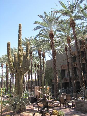 """Hyatt Regency Scottsdale Resort and Spa at Gainey Ranch: Hyatt """"backyard"""""""