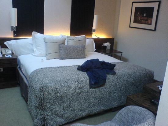 คราวน์พลาซ่าลอนดอน เคนซิงตัน: Room