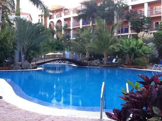 Hotel Cordial Mogan Playa: Pool surrounded by beautiful trees