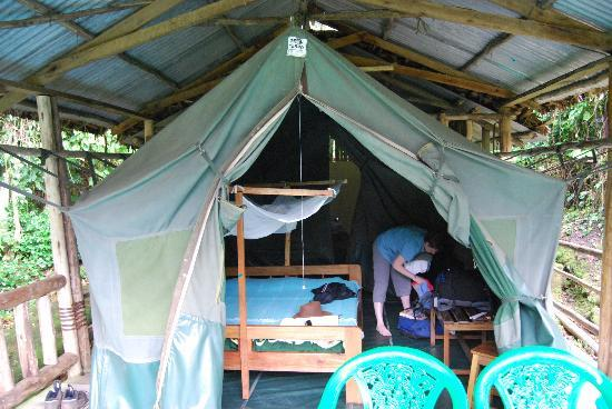 The Buhoma Community Rest Camp: Our tent