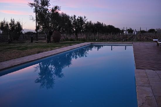 Club Tapiz Hotel: Pool at sunset