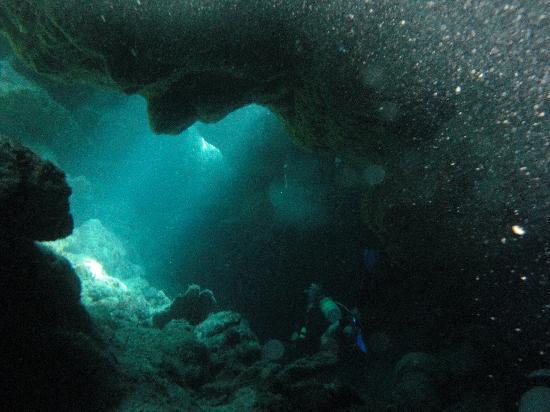 Turquoise Bay Dive & Beach Resort: under water at Underground