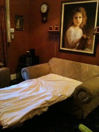 นอบฮิลล์โฮเต็ล: Filthy Sofa bed upholstery