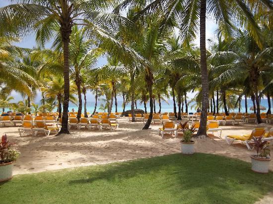 Viva Wyndham Dominicus Palace: arrivé a la plage