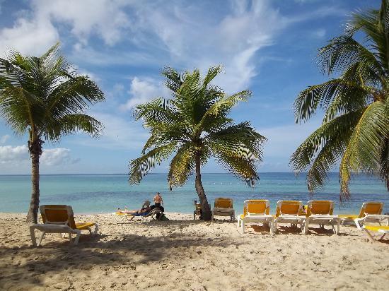 Viva Wyndham Dominicus Palace - An All-Inclusive Resort: La plage