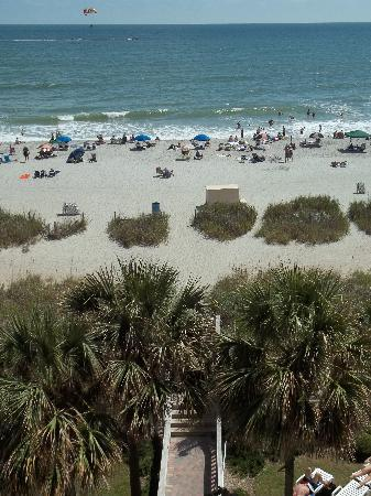 Sea Crest Oceanfront Resort: The view from our balcony!