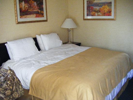 Rodeway Inn & Suites - New Hope: Attractive bedroom, comfy bed