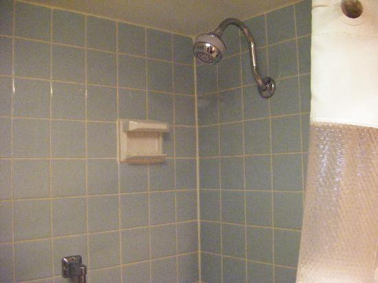 Rodeway Inn & Suites - New Hope: Ramada Shower all excellent condition