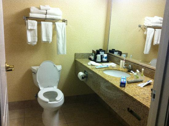 Country Inn & Suites By Carlson, St. Paul Northeast: Bathroom of room at Country Inn and Suites on Vadnais Center.