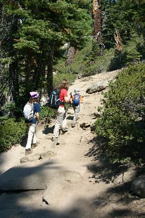 Sentinel Dome: On the trail.