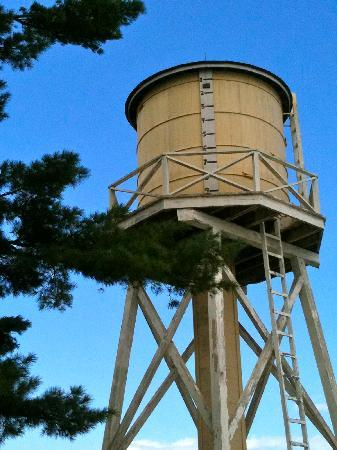 Wells Reserve at Laudholm: The water tower