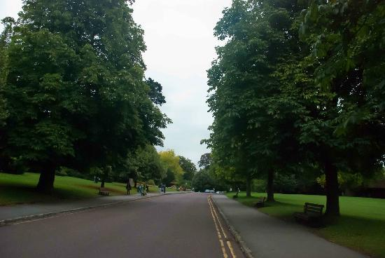 Royal Victoria Park: Even the road bisecting the park was nice