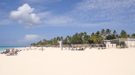 Divi Aruba All Inclusive: Playa