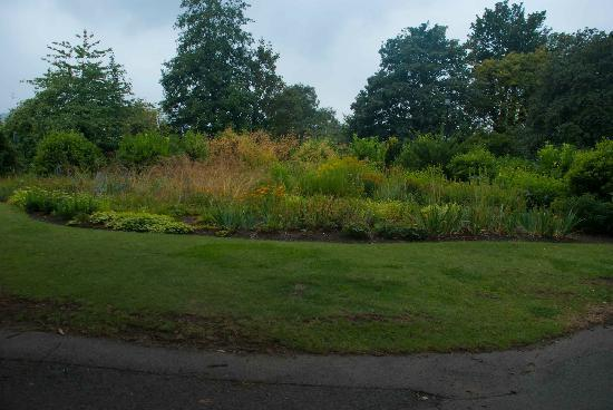 Royal Victoria Park: Great colours, even on a gloomy day