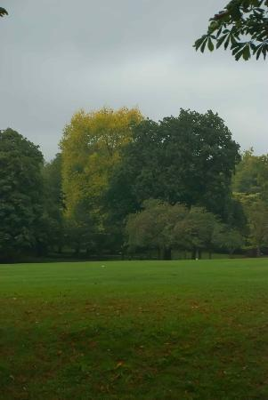 Royal Victoria Park: Lovely grassland