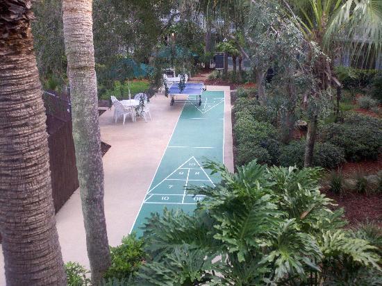 เมจิคทรี รีสอร์ท: Shuffle board / Ping Pong / Grill area