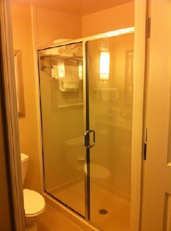 Hilton Garden Inn Eugene / Springfield: shower