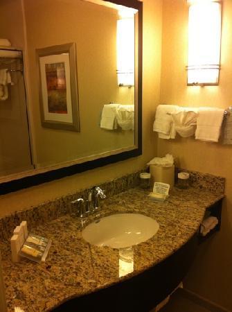 Hilton Garden Inn Eugene / Springfield: bathroom sink
