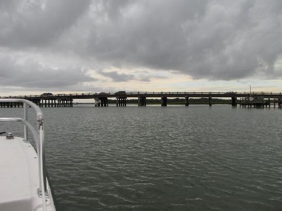 Tideline Tours: Folly Beach Bridge