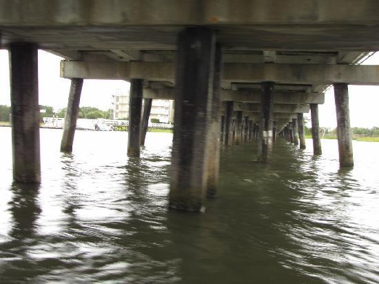 Tideline Tours: Under the bridge to Folly Beach