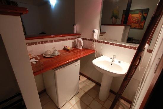 Wellesley Resort Fiji: Minibar & only sink in room