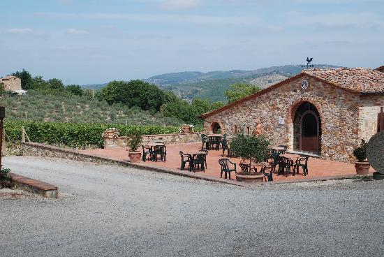 Tuscany Tour Time: Fattoria Montecchio