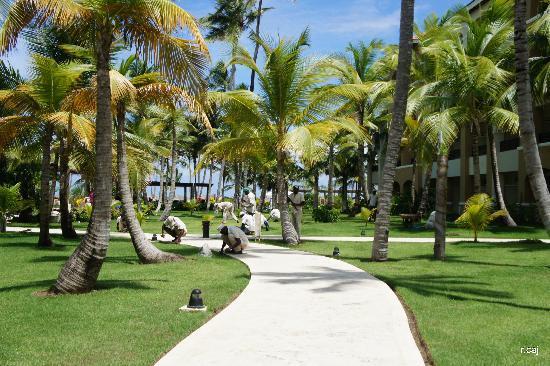 Now Larimar Punta Cana: landscaping crew