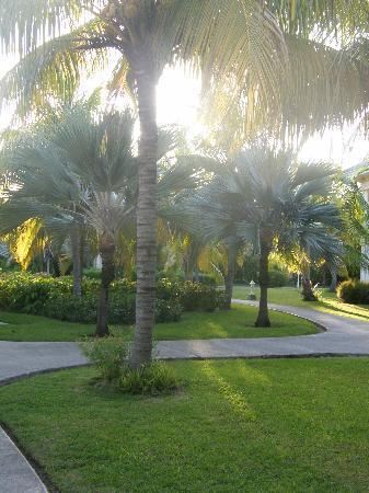 Melia Península Varadero: the stunning gardens